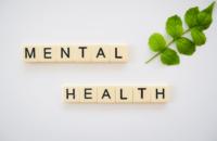Welfare and Mental Health